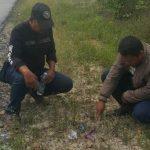 Polisi Pastikan Pelaku Curat Pembawa Senpi Rakitan Sebagai Warga Karimun