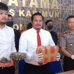 Ringkus Bandar Narkoba, Polisi Sita 5,6 Kilogram Ganja Kering