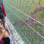 Ada Spot Wisata Gratis Baru di Prayun Kundur, Namanya Taman Rusa