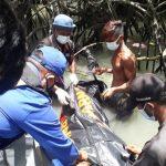 Sesosok Mayat Ditemukan Membusuk di Hutan Bakau